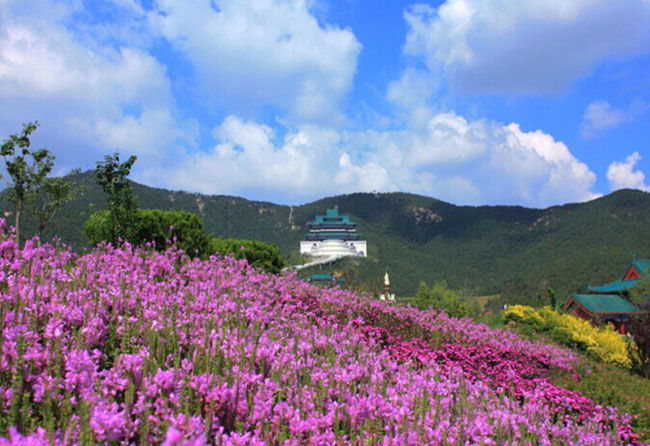 威海仙姑顶名胜风景区位于威海里口山风景名胜区东景区内,是国家aaaa