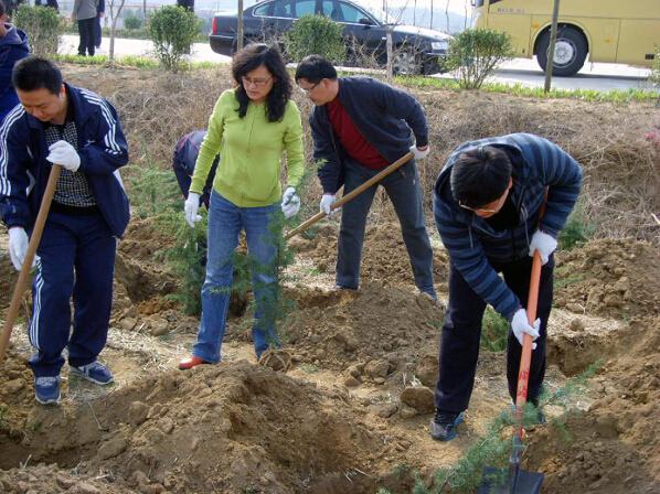 到帮扶村开展植树造林