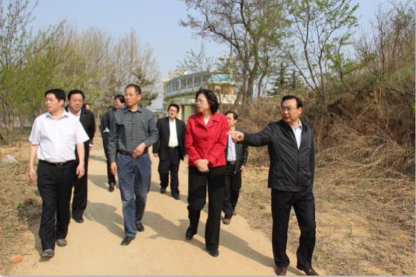 市领导视察水利工程