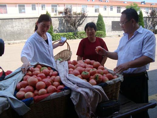 加强农产品检查