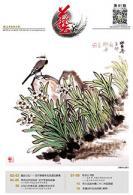 艺海专刊第41期