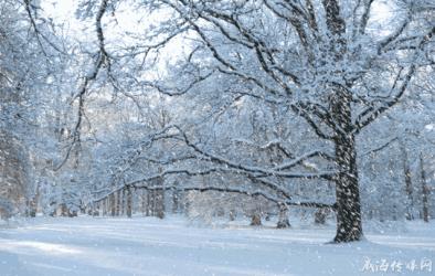 一下雪,澳门威尼斯人登陆网址这些景区就美成了水彩画...