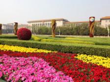 """一带一路""""高峰论坛主题景观扮靓北京迎盛会"""