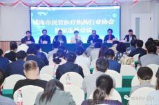 凤凰国际市民营医疗机构行业协会换届选举大会在我院成功举行