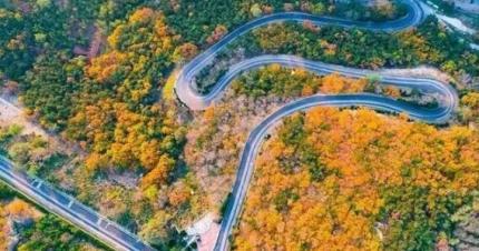 威海这条超美公路获得国家级荣誉!